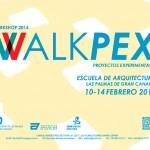 Profesora coordinadora del taller de proyectos experimentales Walkpex.